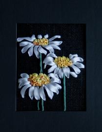 Miniprojekt - Prästkrage, svart